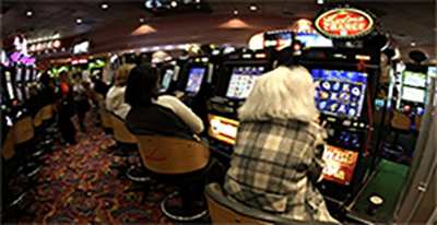 Pokies losses Australia