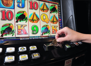 Cairns pokies losses revealed